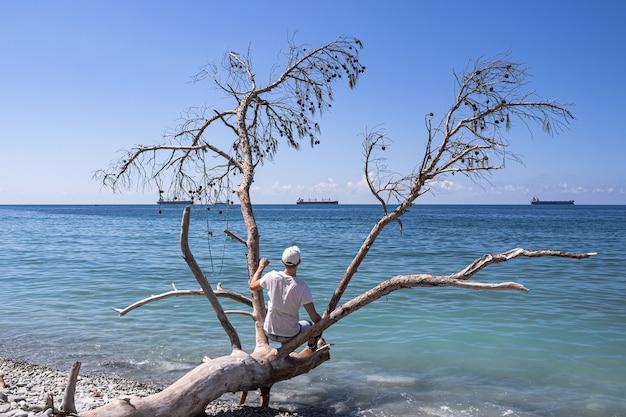 Schilderachtig zomerlandschap op een stenen strand
