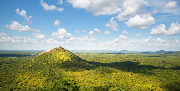 Schilderachtige groene vallei en theebergen, ceylon. landschap van sri lanka