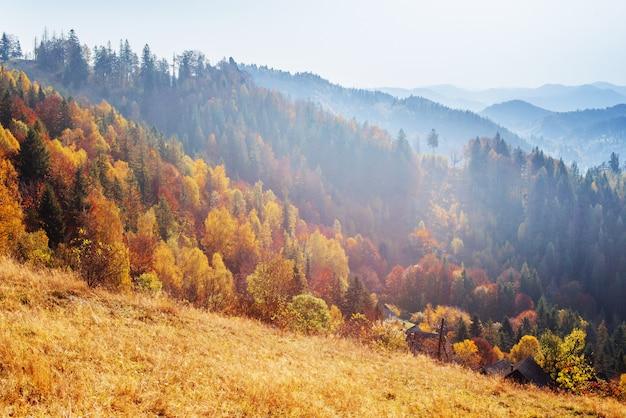 Schilderachtige herfst landschap