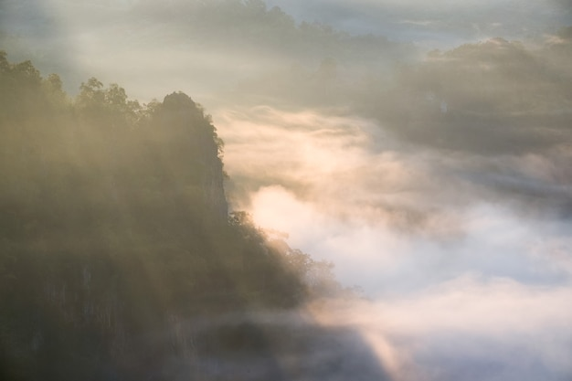 Schilderachtige mistige vallei bij zonsopgang, baan jabo, mae hong son, thailand