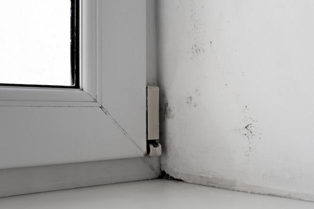 Schimmel in de hoek van het venster op een witte muur textuur achtergrond