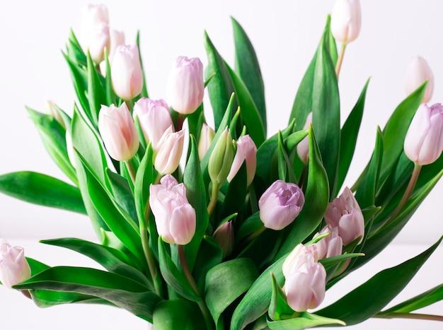 Schitterend de lenteboeket van roze tulpen op een wit