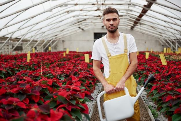 Schitterende planten. portret van mooie jonge kerel in de broeikas die voor bloemen zorgt.
