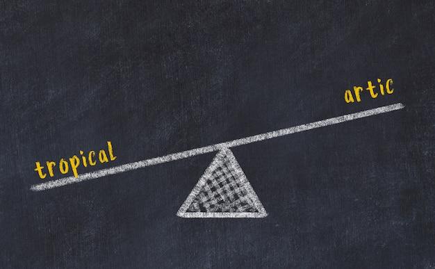 Schoolbordschets van schalen. concept evenwicht tussen tropisch en artic