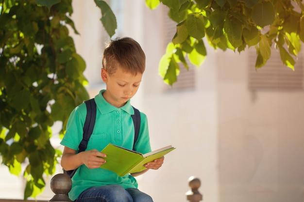 Schooljongenszitting onder een boom en een gelezen boek op een zonnige de zomerdag.