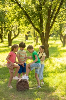 Schoolkinderen dichtbij stomp in groen park