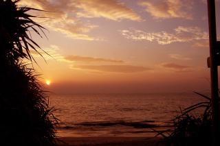 Schoonheid van een darknes in sri lanka, landschap