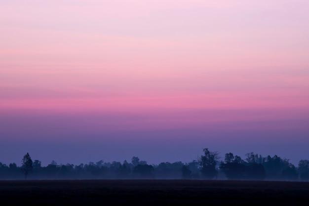 Schoonheidshemel van roze wolken in hemel bij de zonsonderganglente