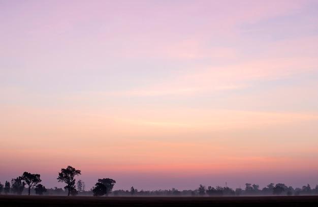Schoonheidshemel van roze wolken in hemel bij de zonsopganglente