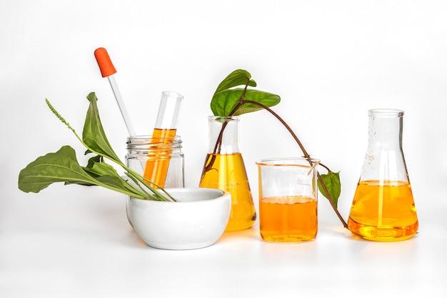 Schoonheidsproduct natuurlijke organische plantkunde