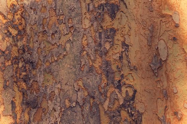 Schors van boom achtergrond