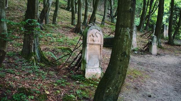 Schot van oude begraafplaats met joodse grafstenen. grafstenen in joods