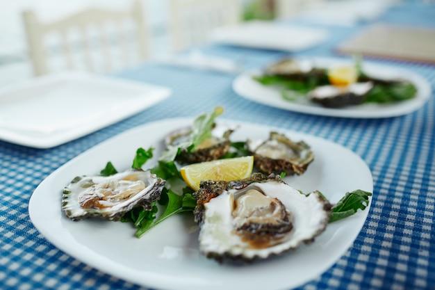 Schotel van verse rauwe oesters, groene salade en citroen op een terras