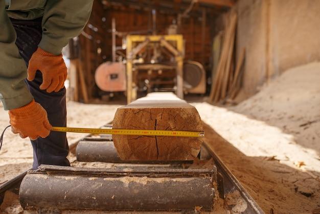 Schrijnwerker met meetlint meet het logboek op houtbewerkingsmachine, houtindustrie, timmerwerk. houtverwerking op fabriek, boszagen in houtzagerij, zagerij