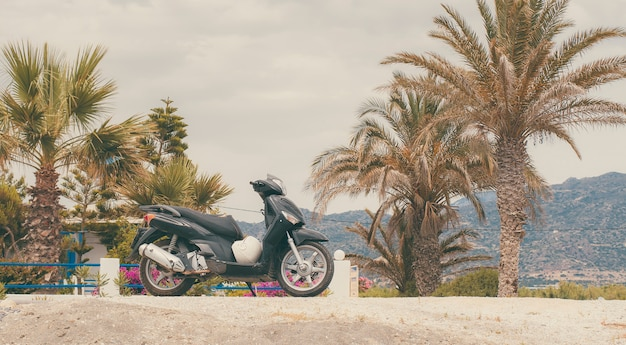 Scooter geparkeerd op zonnige dag onder de palmbomen van een prachtig strand op het eiland kreta