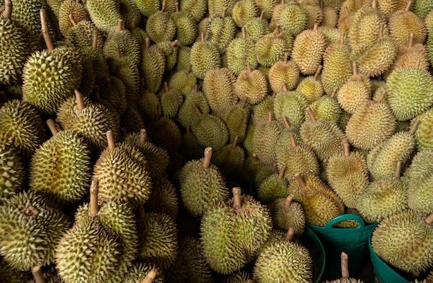 Seizoensgebonden durian wordt verkocht aan handelaren voor export naar china.