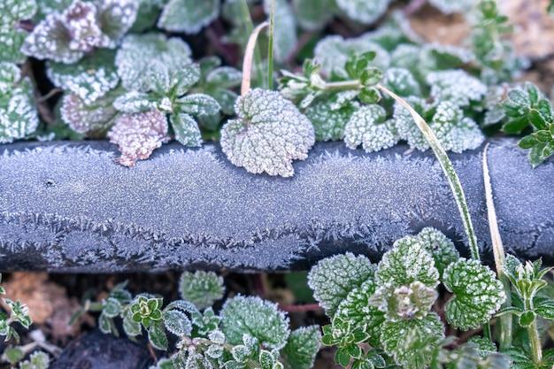 Selectieve aandacht. eerste vorst op een bevroren zwarte plastic waterleiding, late herfst close-up. mooi abstract bevroren microkosmospatroon. bevriezing weer vorst actie in de natuur. winterse achtergrond.