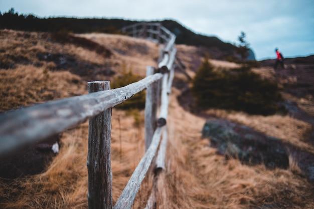 Selectieve aandacht van houten hek