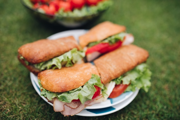 Selectieve focus heerlijke sandwiches met tomaten, uien en sla die op de plaat blijven op picknick. smakelijke salade en groenten die op gras in tuin bij achtergrond blijven. concept van gezondheid en voedsel.