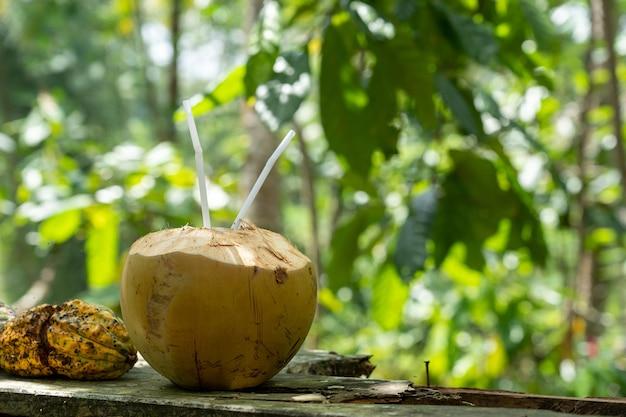 Selectieve focus shot van kokosnootwater