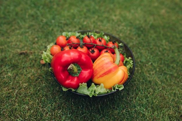 Selectieve focus van gezonde rode en gele paprika's en tomaten liggend op een zwarte plaat in de tuin. verse smakelijke groenten die in de zomer op gras blijven. concept van versheid en gastronomie.
