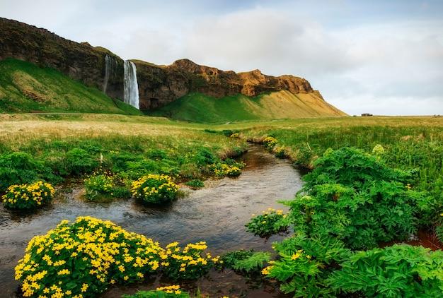 Seljalandfoss-waterval. mooie zomerse zonnige dag