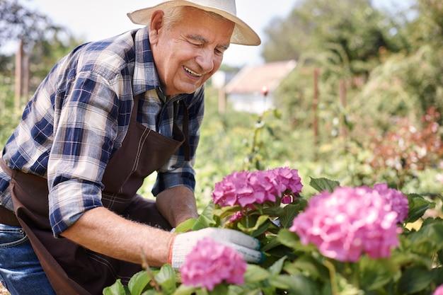 Senior man aan het werk in het veld met bloemen