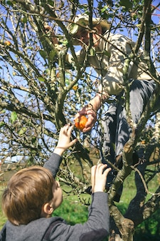 Senior man en schattig gelukkig kind plukken verse biologische appels uit de boom in een zonnige herfstdag. grootouders en kleinkinderen vrije tijd concept.