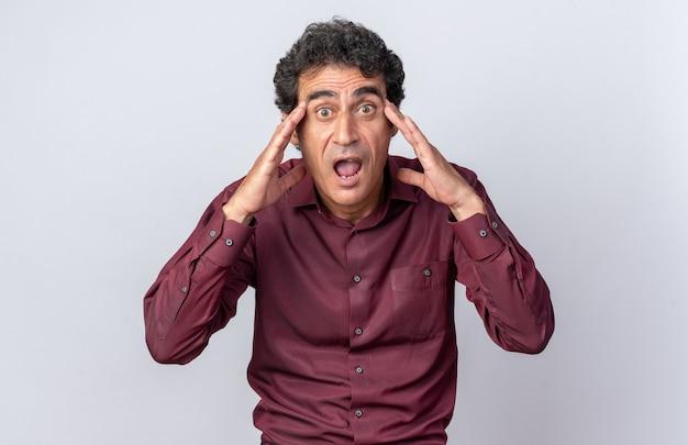Senior man in paars shirt kijkend naar camera gestrest en nerveus met handen op zijn hoofd staande op witte achtergrond