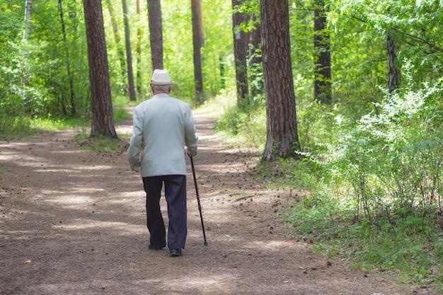 Senior man wandelen in het bos