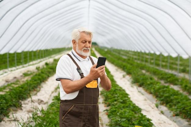 Senior man zorgt voor planten in moderne kas