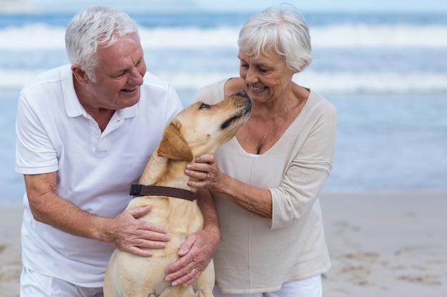 Senior paar spelen met hun hond op het strand