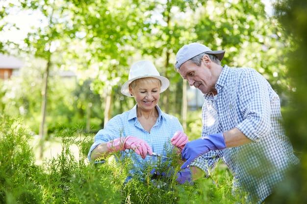Senior paar tuinieren in zonlicht