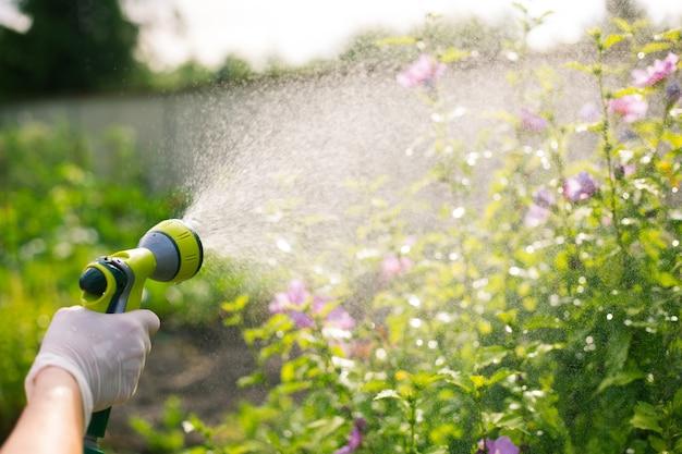 Senior vrouw haar mooie bloemen drenken met de hand drenken buis, tuinieren concept