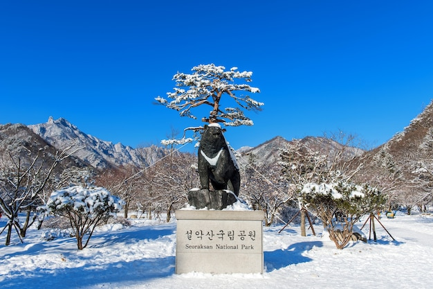 Seoraksan national park in de winter locatie op gangwon, zuid-korea