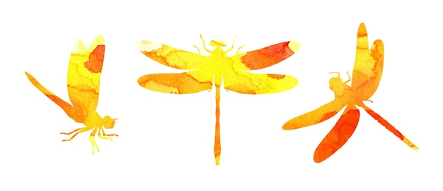 Set aquarelillustraties van gele abstracte libellen met verfstrepen leuke grappige print
