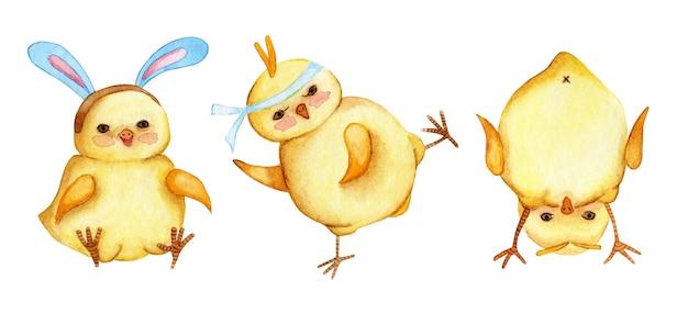 Set aquarelillustraties van kleine schattige gele kippen haanfighter kip met konijntje