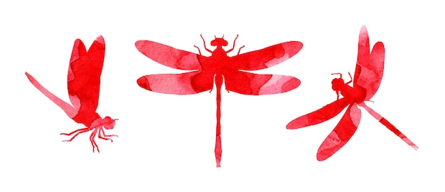Set aquarelillustraties van rode abstracte libellen met verfstrepen leuke grappige print