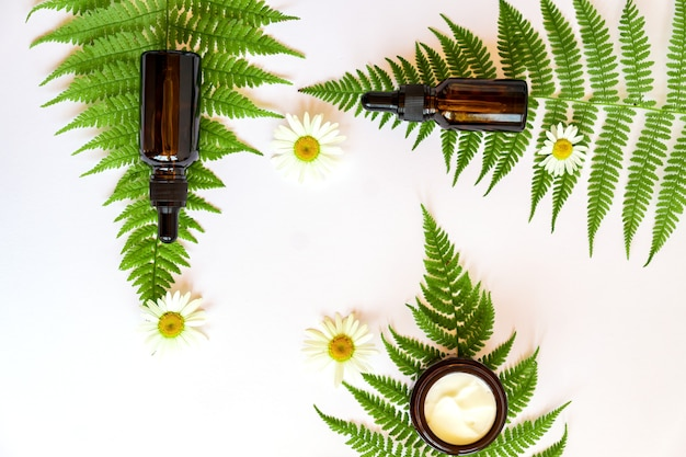 Set natuurlijke kruidencosmetica met kamillebloemen en varenbladeren. gezichtscrème en serum in donkere glazen flesjes met planten en kruiden