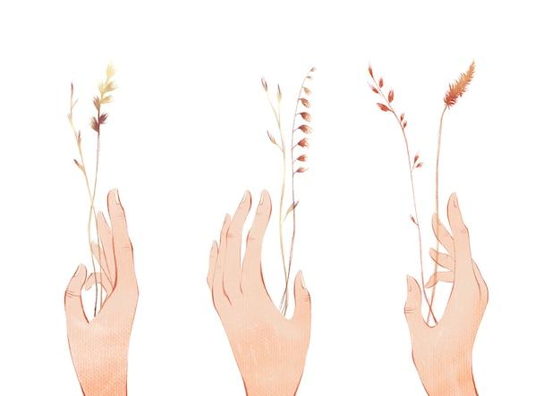 Set van handen met boeketten of trossen veldplanten bloemen geïsoleerd op een witte achtergrond