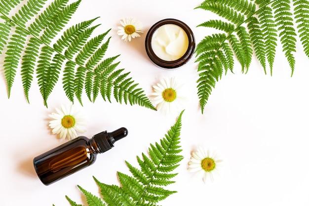 Set van natuurlijke biologische gezichtscrème en etherische olie op varenbladeren met kamillebloemen. kopieer ruimte voor uw cosmeticamerkontwerp.