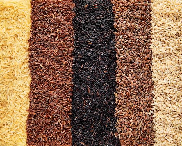 Set van verschillende rijst als ondergrond: zwarte, basmati, bruine en rode gemengde rijst