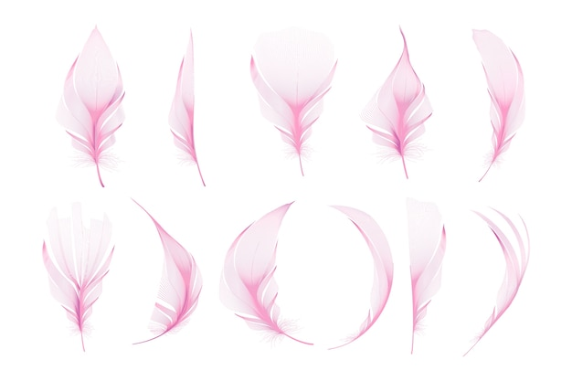 Set van verschillende vallende pluizige gedraaide veren
