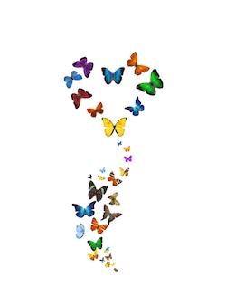 Set van vliegende vlinders in de vorm van een bloem geïsoleerd op een witte achtergrond. tropische insecten. gekleurde motten voor design. hoge kwaliteit foto