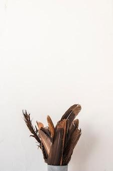 Set van zwarte veren in blik