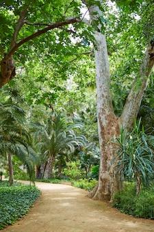 Sevilla maria luisa park gardens spanje