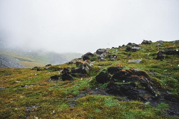 Sfeervol groen alpenlandschap met prachtige sneeuwval.