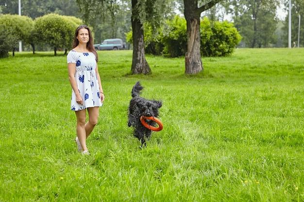Shaggy briard met speelgoed in zijn tanden loopt in openbaar park met vrouwelijke eigenaar in de zomer.