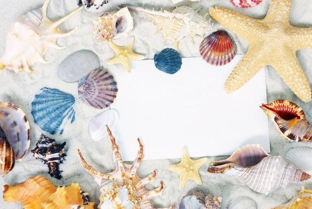 Shells frame achtergrond