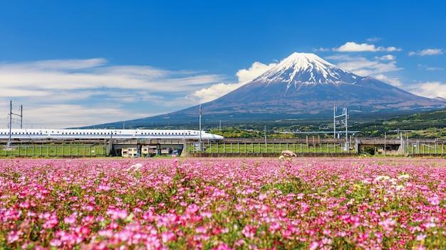 Shinkansen of jr bullet train door mount fuji en shibazakura in de lente in fji city, shizuoka,
